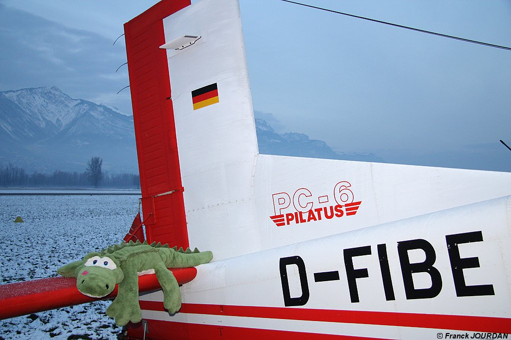 Pilatus PC6 Turbo Porter - D-FIBE
