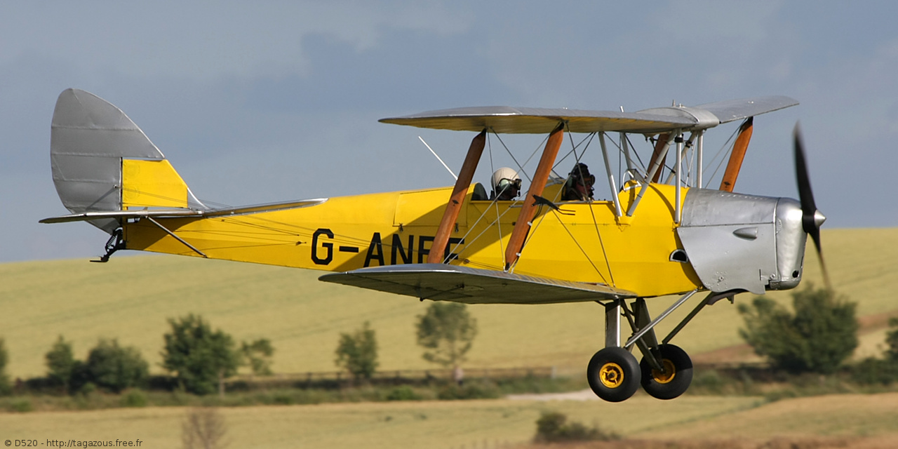 De Havilland DH 82 Tiger Moth - G-ANPE