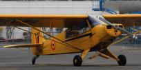22228 - Piper PA-18 Super Cub OO-SPQ