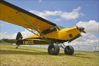 43690 - CubCrafters Carbon Cub EX F-WCCE